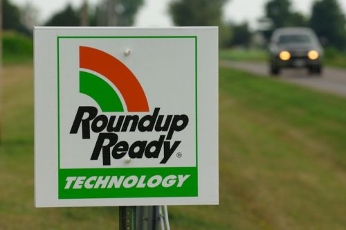 round up ready herbicide