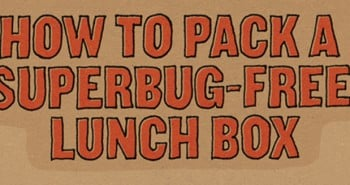 How to Pack a Super-bug Free Lunch Box