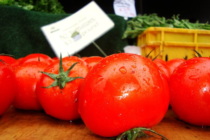 Genetically-Modified-Tomato-(Image-via-forbes)