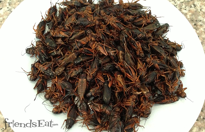 A Plate of Fried Crickets