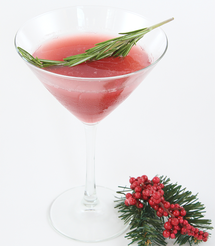 Gin-and-Cranberry-Sauce-Cocktail-by-Alie-and-Georgia